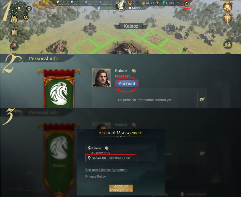 how to find LotR: Rise to War user id
